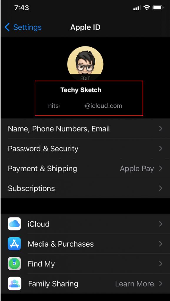 Apple ID email iOS